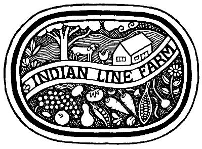 ILF-Logo-400x295