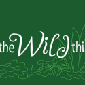 Where the Wild Things Are 2012