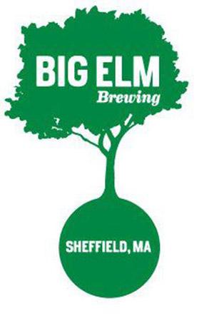 BigElm_Logo_image-1